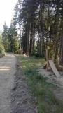 Stezka Zámecký vrch Kraslice